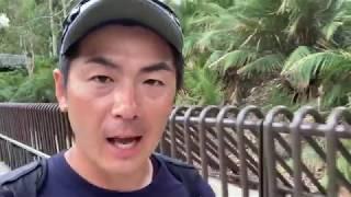 【全豪オープンテニス2019】 え!?こんなに広いの!?全豪会場リポートver.2!