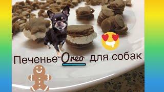 Готовим печенье Oreo для собак| Как приготовить лакомства для собак? | Вкусняшки своими руками