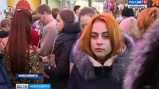 «Вести» узнали стоимость самых дорогих собак в Новосибирске