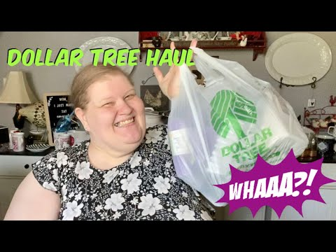 **New Items** Dollar Tree Haul
