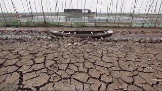Засуха в китайской провинции - требуется найти срочное решение - science