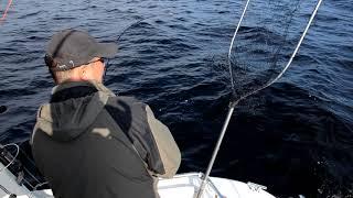 Рыбалка в Кварцитном.
