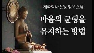 마음의 균형을 유지하는 방법ㅣ일묵스님ㅣ2020.10.28. 초기불교 제따와나선원 정기법회.