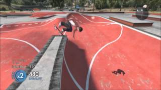 Skate 3/quick Video/future Plans