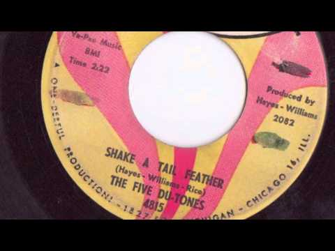 SHAKE A TAIL FEATHER - THE FIVE DU-TONES