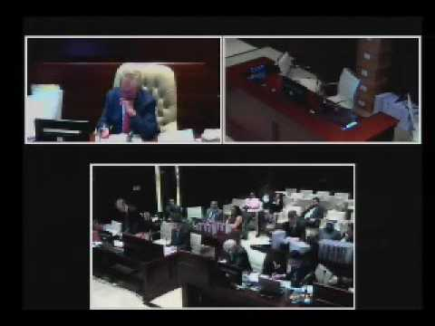 Court of First Instance 002/2016, Das Real Estate v National Bank of Abu Dhabi Pjsc. Day 3 Part 2