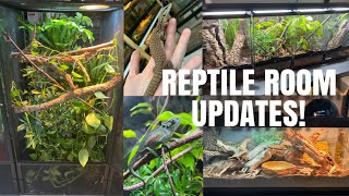 Upgrades, Changes And Makeovers In My Reptile Room!