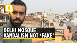 Delhi Mosque Vandalism Video Wrongly Labeled 'Fake' by Media | The Quint