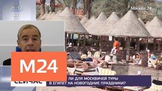 Российские эксперты проверяют курорты Египта - Москва 24