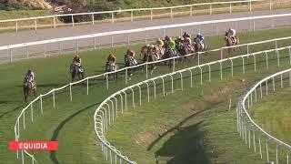 Vidéo de la course PMU PRIX DE GRIMAUD