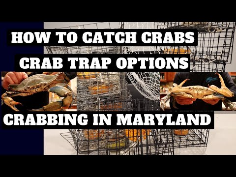 Crabbing In Maryland - Best Crab Trap Options