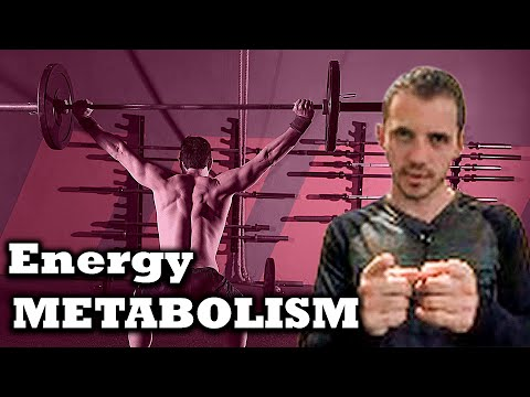 Metabolism for Performance: 5 Min Phys