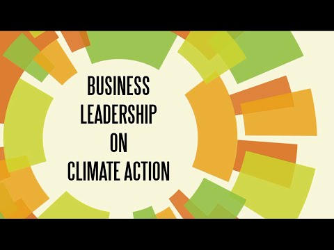 Business Leadership on Climate Action