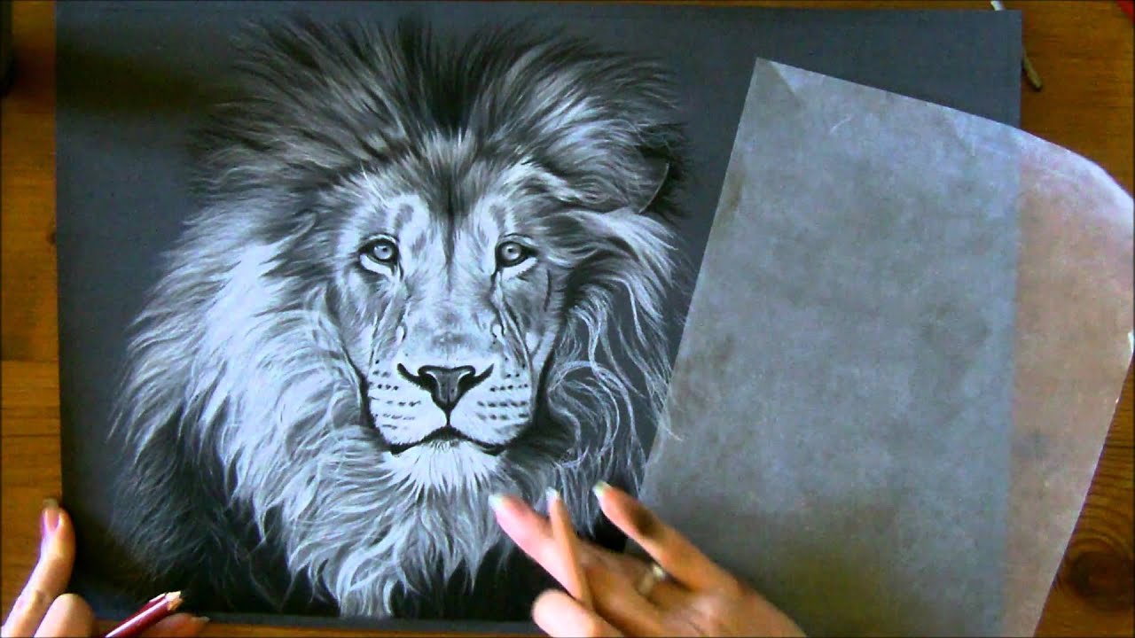 Fabuleux Aperçu : Technique crinière lion aux pastels secs - YouTube MB25