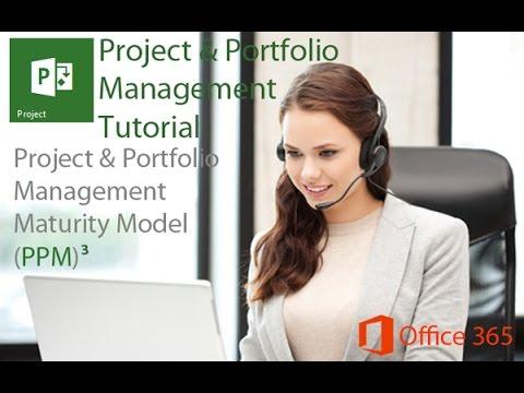 Project and Portfolio Management Maturity Model (PPM)3