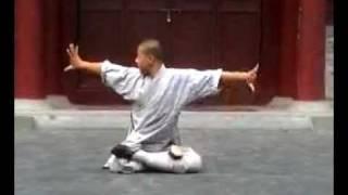 Shaolin Kung Fu Demonstration