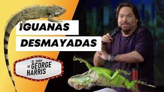 El Show de GH 04/02/21 Parte 1 - Iguanas se desmayan en Miami 🦎