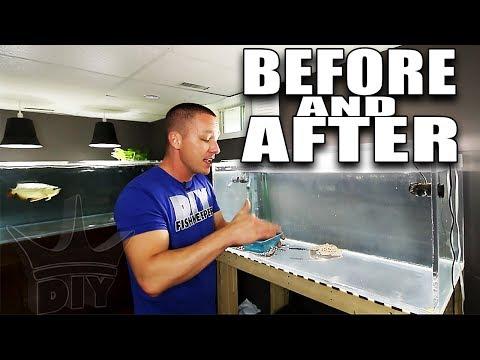 Download Youtube: 2,000G tank stocking and Stingray aquarium update!