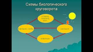 видео Законы организации.