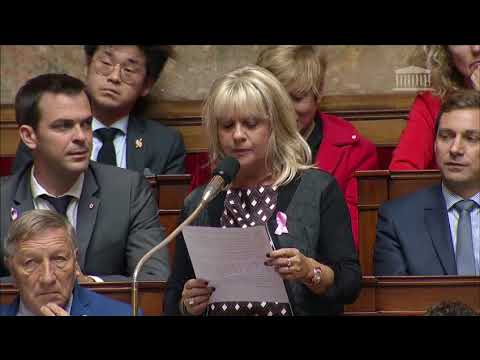 Question au Gouvernement - 18 Octobre 2017