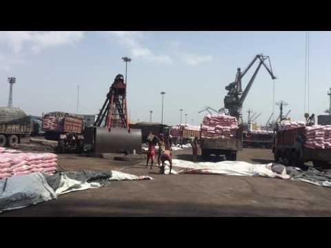 Rice Bulk Cargo Handling by G.S. Infraport