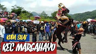Download Video Atraksi kuda renggong kecamtan Margahayu MP3 3GP MP4