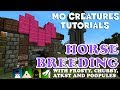 Minecraft Mo Creatures Tutorial - How To Breed Horses (Including New Hidden Horse Type)