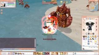 [Kingdom Flyff] Q amp + S amps gameplay