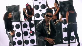 patoranking how much parkwell ft skarfizo official video