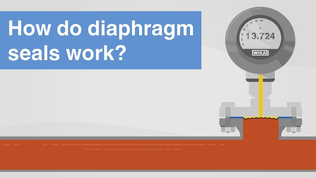 How do diaphragm seals work? | Areas of application and advantages in pressure measurement
