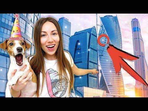 Реакция на Новый Дом День рождения Собаки Джине 5 лет | Elli Di Pets