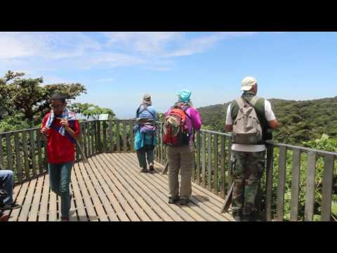 Visiting Monteverde Cloud Forest Reserve, Costa Rica
