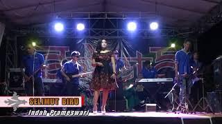 Download Lagu Selimut biru dangdut'a wong ndeso mp3