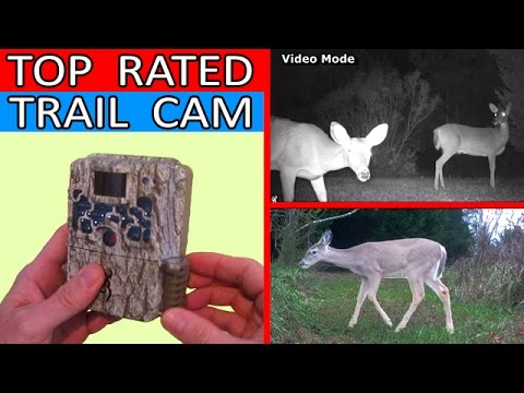 the-best-trail-camera-u-can-buy!-browning-strike-force-hd-btc-5hd-review-bushnell