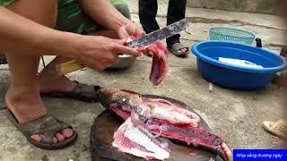 Cá gỏi người Thái Sơn La | Ẩm thực dân tộc Việt
