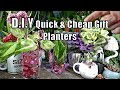 Easy DIY Plant Gifts   Aquatic Vases   Pothos Propagation   Unicorn & Holo Planters!