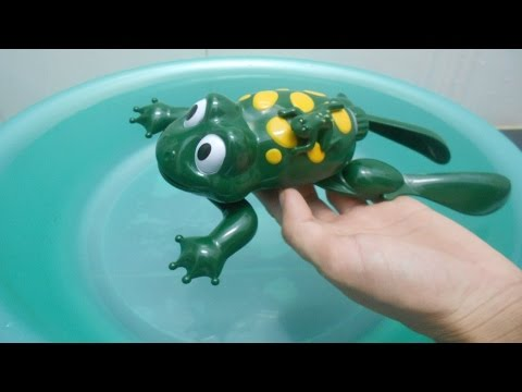 Chú ếch con Swimming Frog Toy