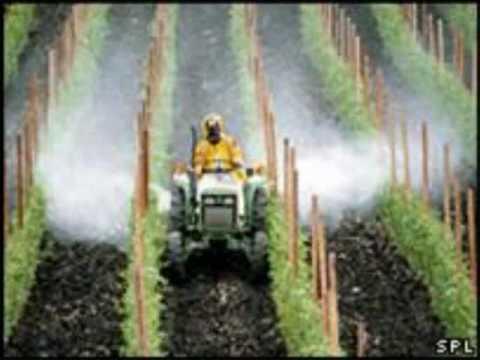 Avoiding Pesticides in Produce - Nutritionist Karen Roth - San Diego