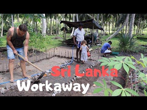 Sri Lanka Workaway - Harte Arbeit im Garten? - SriLanka Backpacking Route Weltreise