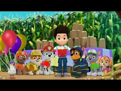 Paw Patrol Game Corn Roast Catastrophie - Nick JR English Cartoon - Paw Patrol Full Episodes