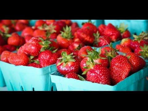 Theo chân Klever Fruits khám phá trang trại Dâu tây Hàn Quốc