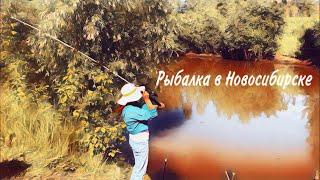 Рыбалка на реке Тулка Новосибирск Язь подлещик