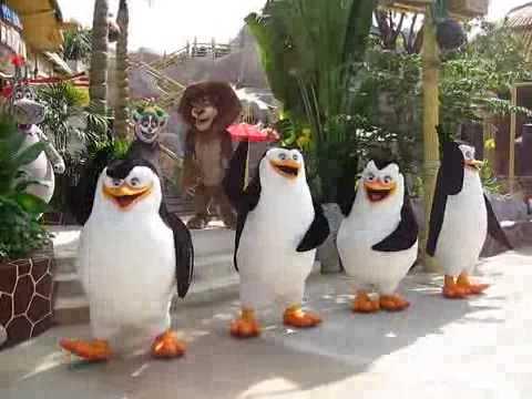 Madagascar dance @ Universal Studio Singapore