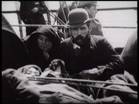 immigration irlandaise  début 1900