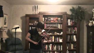 Through the Fire and Flames - Metal Violin Cover