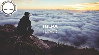 Tulpa - Flower
