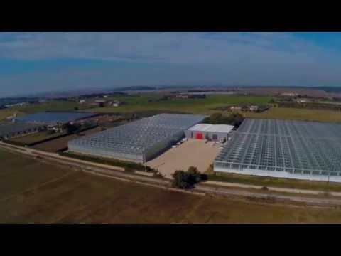 Clément's success story - France (English subtitles)