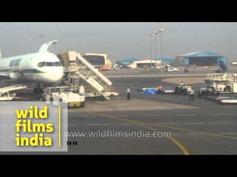 Kingfisher, Blue Dart, SpiceJet, JetLite planes at IGI airport