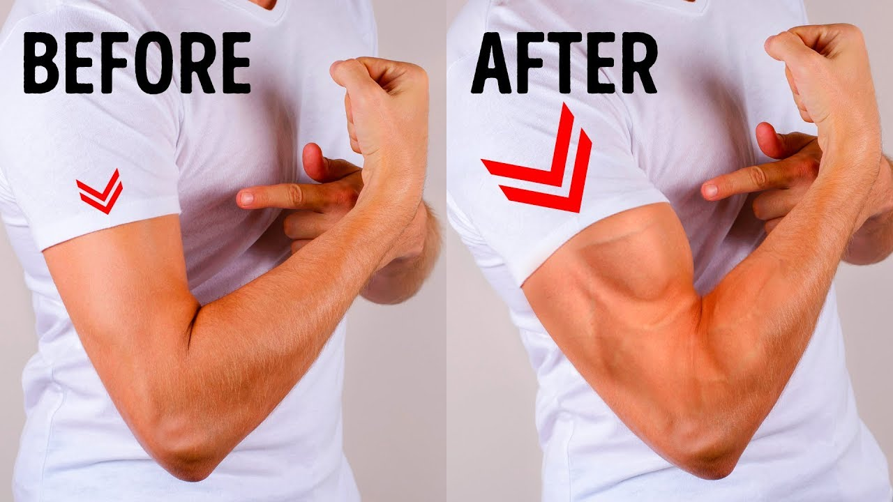 6 Simple Exercises To Get Bigger Arms In No Time Youtube