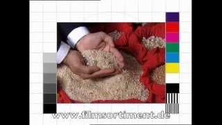Kunsthandwerk: PERLEN, PLATIN, EDELSTEINE - DIE FILME (DVD/Vorschau)